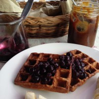 31aug-waffle-with-schmears