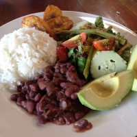 costa rican vegan lunch plate