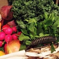 9aug-produce