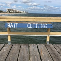 25oct-bait-cutting