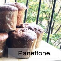 panetone-sq