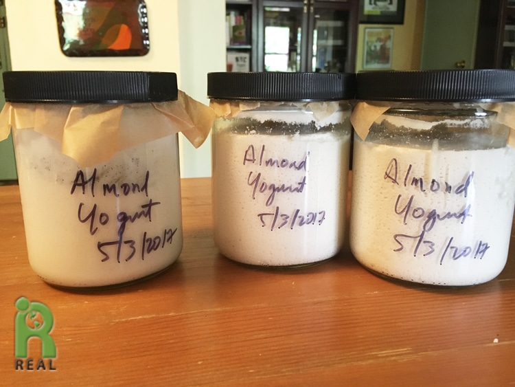 4may2017-yogurt